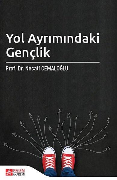 Yol Ayrımındaki Gençlik.pdf