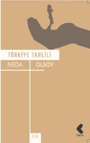 Türkiye Tahlili.pdf
