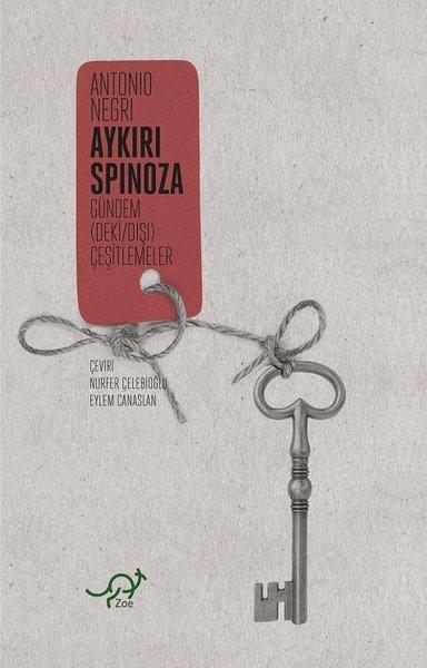 Aykırı Spinoza.pdf