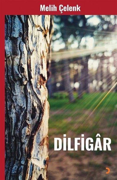 Dilfigar.pdf