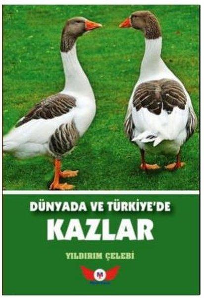 Dünyada ve Türkiyede Kazlar.pdf