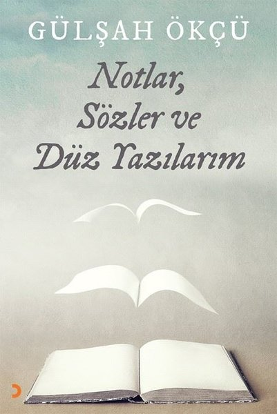 Notlar Sözler ve Düz Yazılarım.pdf